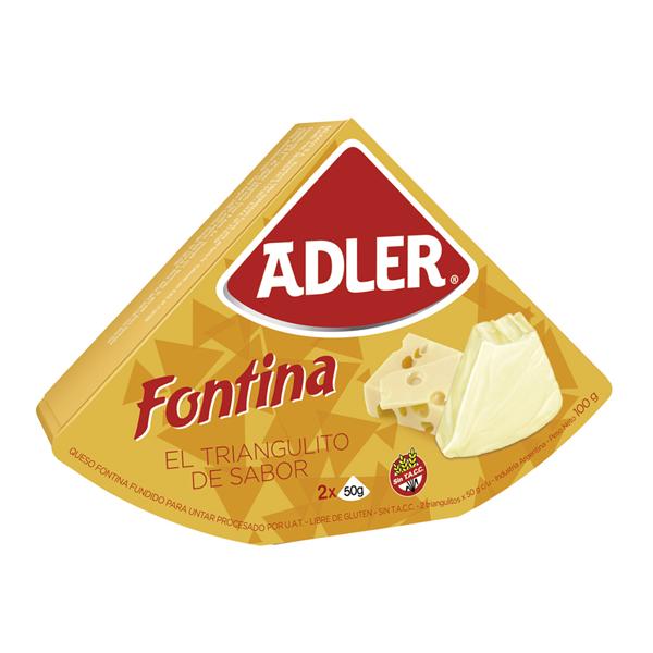 QUESO ADLER FONTINA 100GR